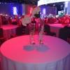 Honda Motor Company Reception: Honda Event Philadelphia: Event Decor: Reception Honda decor: Honda Reception Dinning